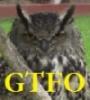 mmoa_writes: (GTFO owl)