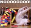 kittenofdoom: (YOU BEAT THE DRAGON)