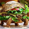 defenestrated: Turtleburger (Fast-- no. Still not fast food.)