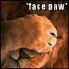 swingandswirl: (facepaw)
