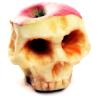 storyinmypocket: ([apples] skull)