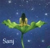 sanj: A woman sitting in space, in a lotus leaf (Kirk - pow pow)