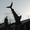 contrarywise: The Headington Shark at dusk (Shark)