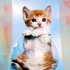 plonks: (Cat)