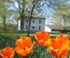 duriyah: (Farmhouse spring)