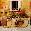 do: (cycling)