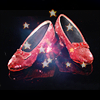 lycannoir: shiny stock of wizard of oz slippers (Default)