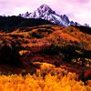 rising: mountains and trees of colorado (r: colorado)