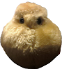 puubuu: (Puffski) (Default)