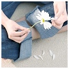 cassiopeia: (jeans and daisy)