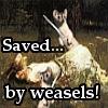 masterofmidgets: (save me captain weasel)