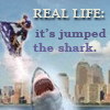 galateus: Real Life: it's jumped the shark. (jupm the shark)