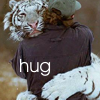 darkemeralds: Photo of a white tiger hugging a man, with caption Hug. (Hug)