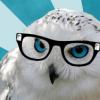 echoscircus: (Echo's Circus, Owl) (Default)