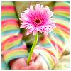 kalli: (pink flower)