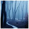 darknightmoon: (Winding Road)