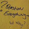 terribilita: (question everything)