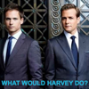 rowdy_tanner: Mike, Harvey, suits (What would Harvey do?)