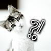cyberill: (?! cat)