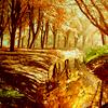 jacquelineb: (autumn cliff)