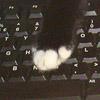 nath: (writing IV)