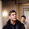 scaramouche: Castiel and Dean from Supernatural (castiel doesn't perch)