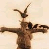 darchildre: sepia toned, several crows on a scarecrow (scarecrow)