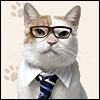 karayan: Jalan: Nyaran (So here's a cat in a business suit.)