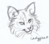 ladyqkat: LadyQKat by Thornwolf (Me)