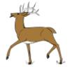 inventrix: (haters gon deer)