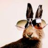 glitterandlube: (Pimp Bunny)