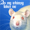 "lasergirl: white rat with ""as my whimsy takes me"" above it (as my wimsey takes me)"