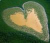 ferraribear: (heart)