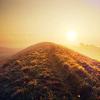 whitegold: (sunlight)