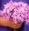 monshere: (цветы)