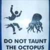 jolly_utter: (octopus)