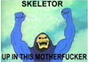 dawn_felagund: (skeletor)