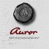 gun_smoke_blue: (ministry of magic badge: auror)