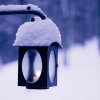 theodosia21: lantern under snow (lantern under snow)