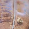 heysportsfan: Close-up of baseball glove (Baseball glove)
