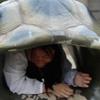 nova: (me: duck and cover, me: hiding)