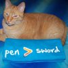 "shaydchara: an orange tabby cat sitting beside a t-shirt that says ""pen > sword"" (pen > sword + Rufus)"