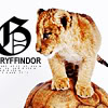 delphi: A lion cub beside the word Gryffindor. (gryffindor)