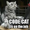 momijizukamori: Grey tabby cat with paws on keyboard and mouse. The text reads 'code cat is on the job', lolcats-style (CODE CAT)