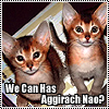 othercat: Two big eared tabby kittens with mischief on their mind caption: We can has aggirach nao? (we can has aggirach!)