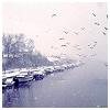 delane: (winter lake)