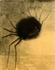 bcholmes: (said the spider to the fly)