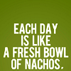 "aiden_firestar: green background, white text of ""every day is like a fresh bowl of nachos""  (Default)"