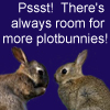 elkes_obsession: There's always room for more plotbunnies! (Default)