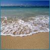 thistlerose: (seasonal: summer, on your shore)